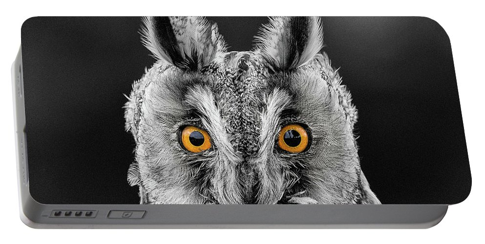 Long Eared Owl Portable Battery Charger featuring the photograph Long Eared Owl 2 by Nigel R Bell