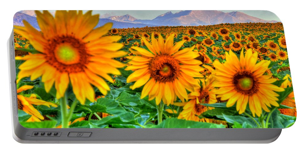 Mountains Portable Battery Charger featuring the photograph Longs Sunflowers by Scott Mahon