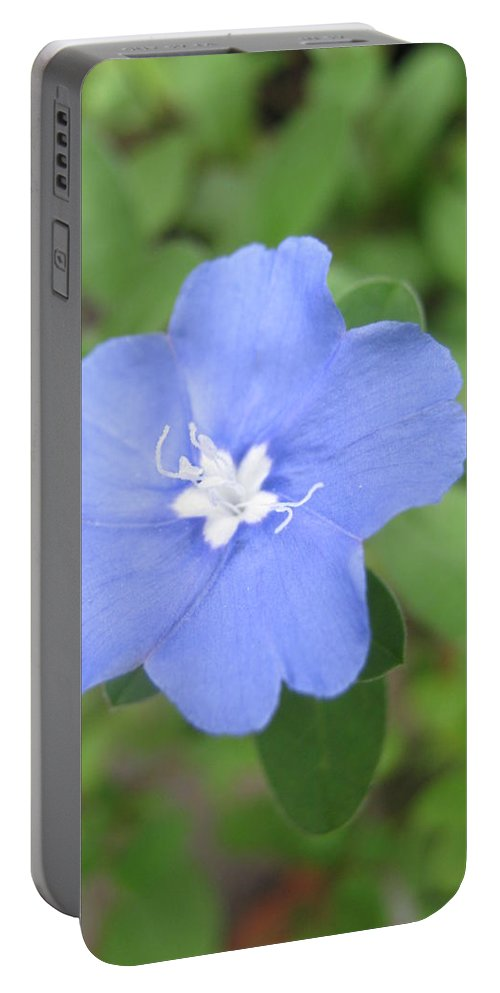 Flower Portable Battery Charger featuring the photograph Lonly Blue Flower by Sandun Somarathna