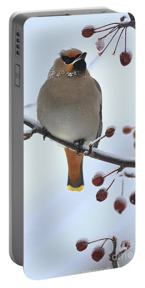 Waxwing Portable Battery Charger featuring the photograph Look At All The Red Berries by Deborah Benoit