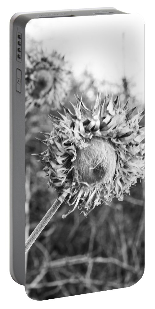 Flower Portable Battery Charger featuring the photograph Look Into My Eyes by Angus Hooper Iii