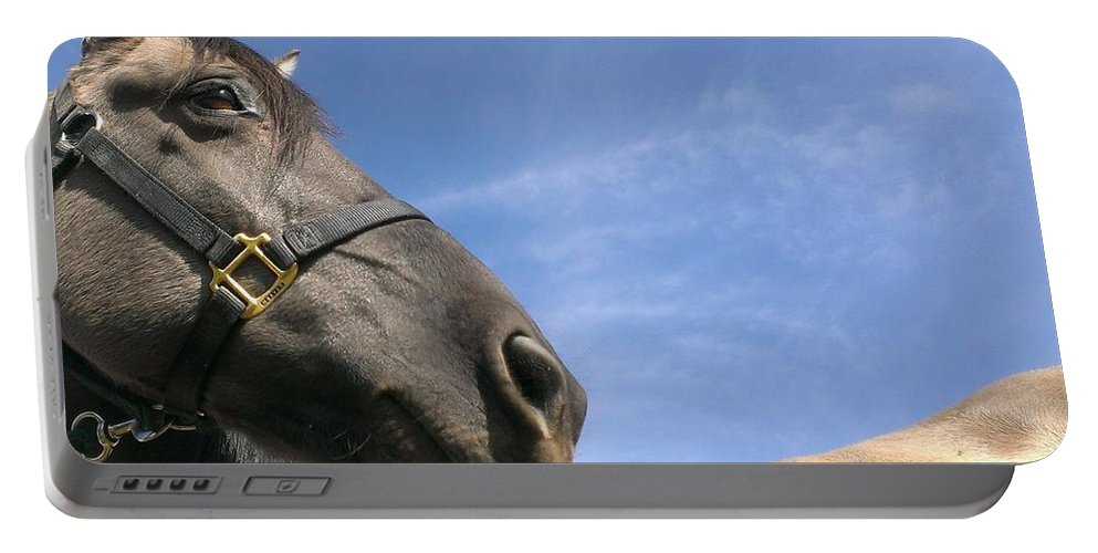 Horse Portable Battery Charger featuring the photograph Looking Behind by LKB Art and Photography