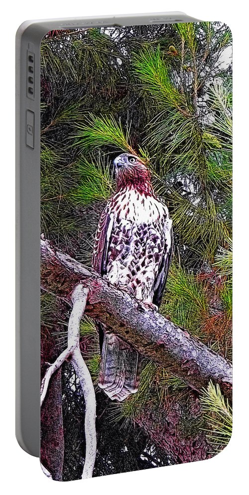 Red Tailed Hawk Portable Battery Charger featuring the photograph Looking For Prey - Red Tailed Hawk by Glenn McCarthy Art and Photography