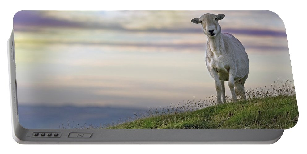 Long Mynd Hill Portable Battery Charger featuring the photograph Looking From The Above by Angel Ciesniarska