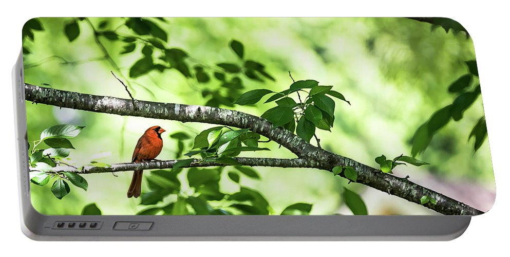 Policebird Portable Battery Charger featuring the digital art Lord Redbird And The Bokeh by Ed Stines