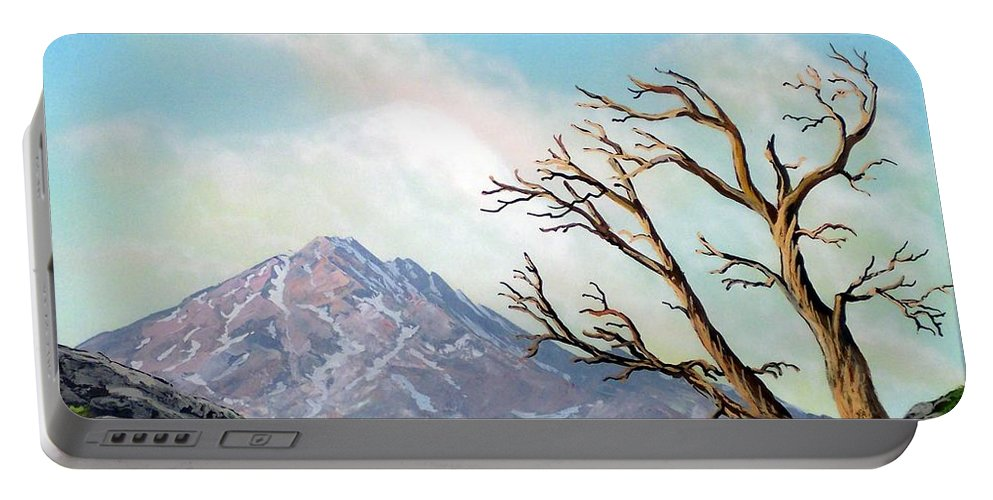 Wildflowers Portable Battery Charger featuring the painting Lost Battle by Frank Wilson
