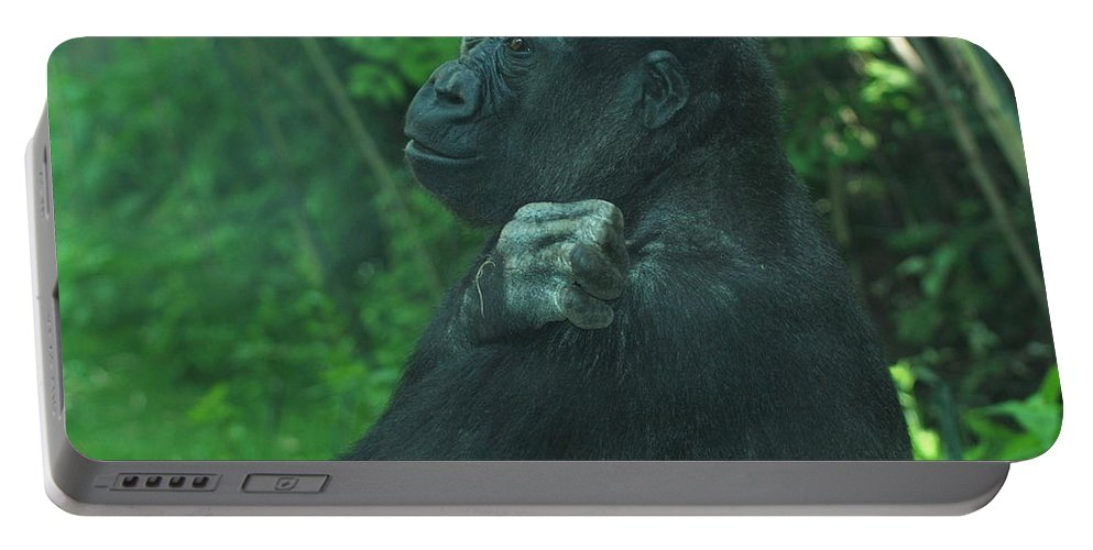 Gorilla Portable Battery Charger featuring the photograph Lost In Thought by Richard Bryce and Family