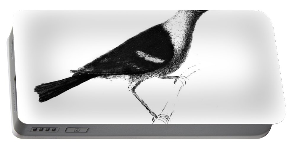 1806 Portable Battery Charger featuring the photograph Louisiana Tanager, 1806 by Granger