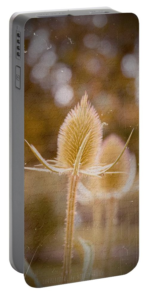 Flower Portable Battery Charger featuring the mixed media Loveletter by Steve K