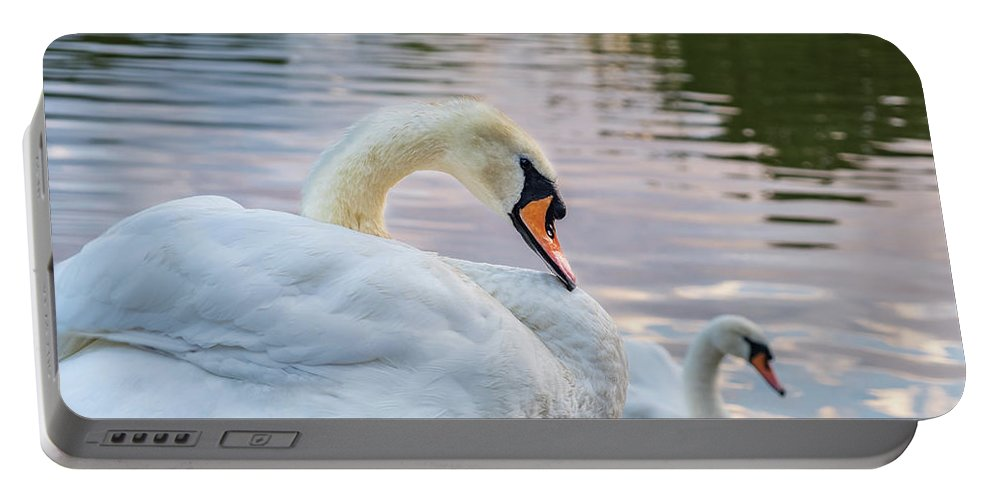 Bird Portable Battery Charger featuring the photograph Lovely Couple by Iordanis Pallikaras