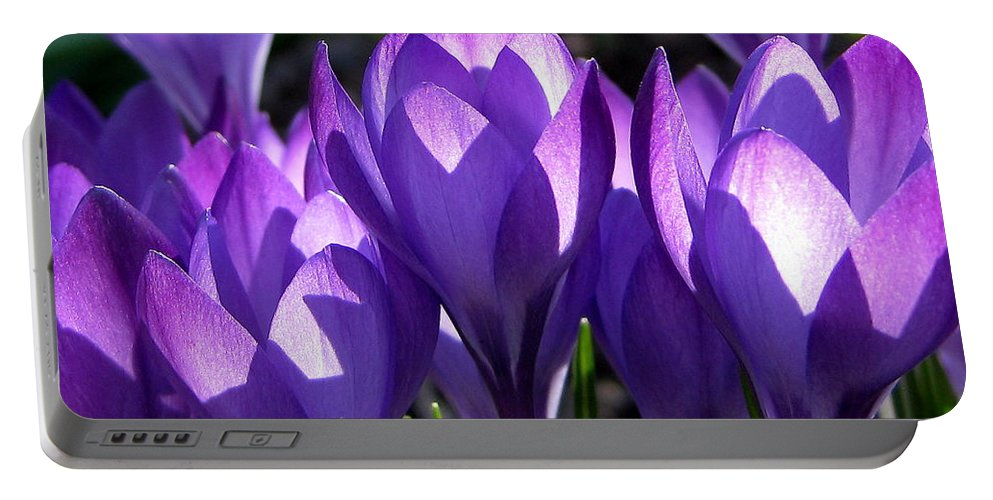 Crocus Portable Battery Charger featuring the photograph Luminous Floral Geometry by Byron Varvarigos