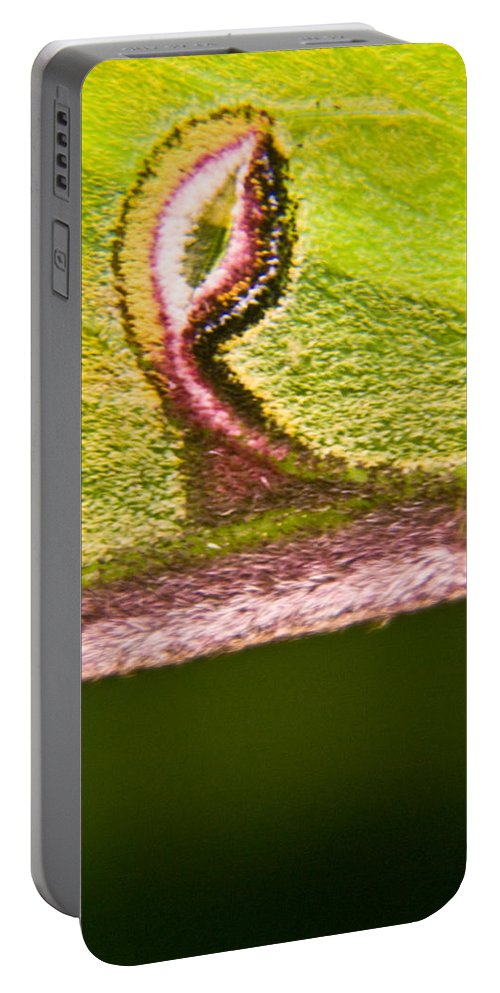 Luna Portable Battery Charger featuring the photograph Luna Moth Eye by Douglas Barnett