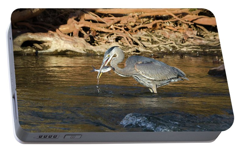 Heron Portable Battery Charger featuring the photograph Lunch On The Neuse River by George Randy Bass