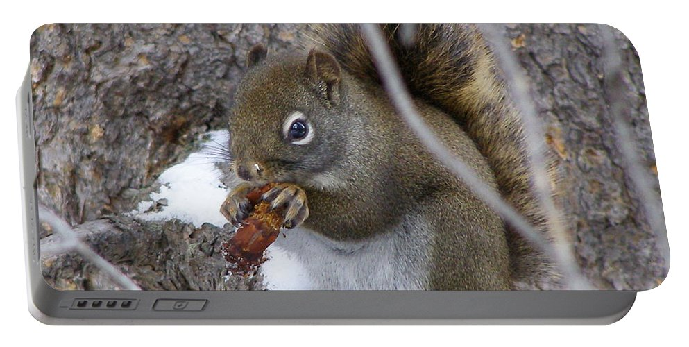 Squirrel Portable Battery Charger featuring the photograph Lunch On The Patio by DeeLon Merritt