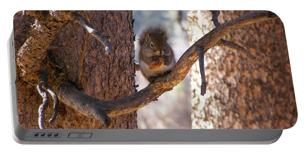 Animals Portable Battery Charger featuring the photograph Lunch Time by DeeLon Merritt
