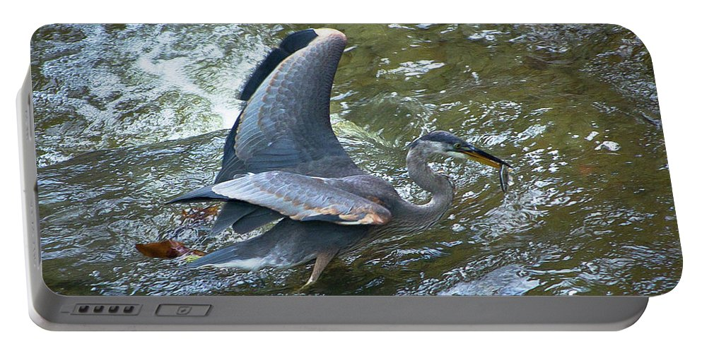 Fish Portable Battery Charger featuring the photograph Lunchtime by Wayne Heim