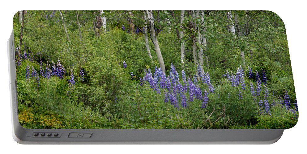 Aspen Portable Battery Charger featuring the photograph Lupine And Aspens by Heather Coen