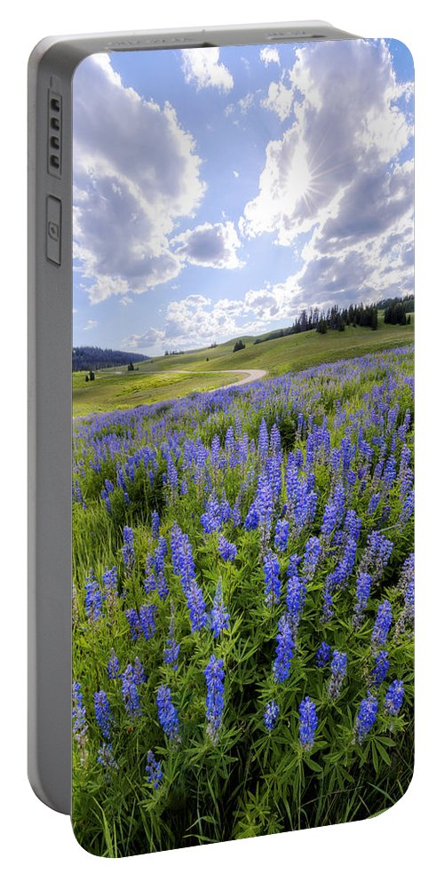 Lupine Pass Portable Battery Charger featuring the photograph Lupine Pass by Chad Dutson