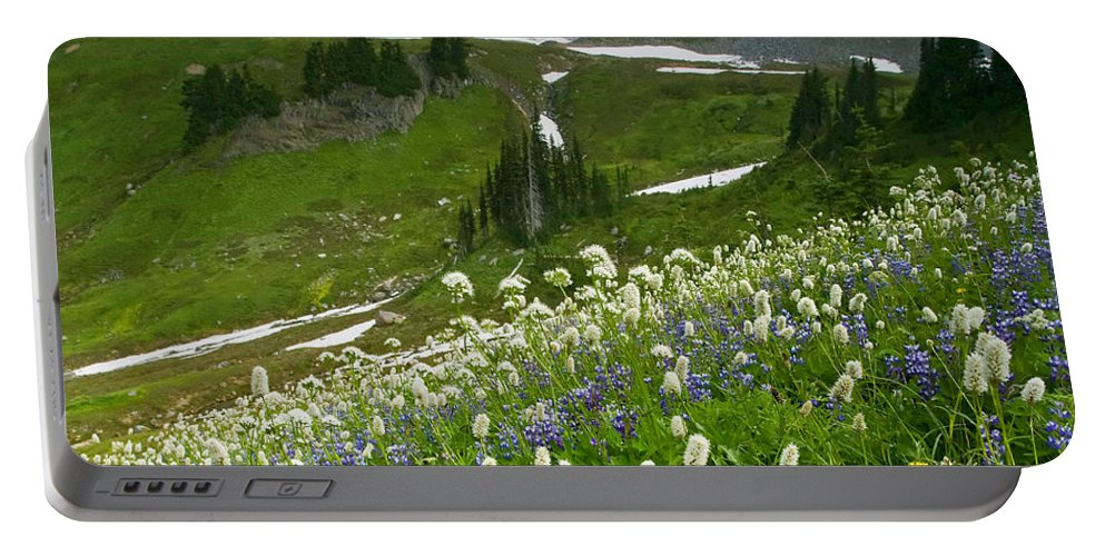 Rainier Portable Battery Charger featuring the photograph Lupine Storm by Mike Dawson