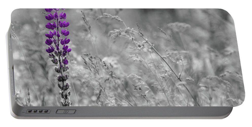 Canada Portable Battery Charger featuring the photograph Lupins 2016 26a by Rodger Wilkie