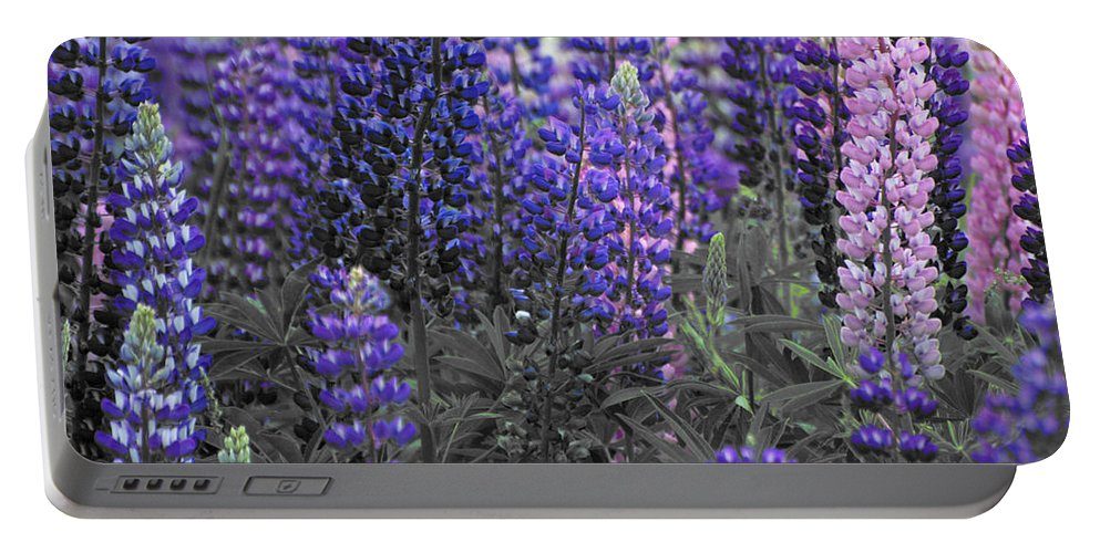 Canada Portable Battery Charger featuring the photograph Lupins 2016 35a by Rodger Wilkie