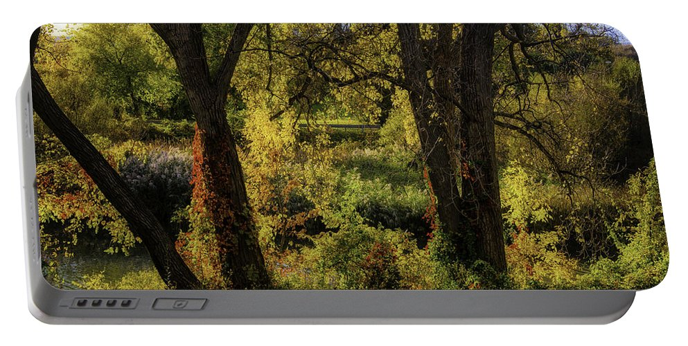 Autumn Portable Battery Charger featuring the photograph Lush Garden by Garry Gay
