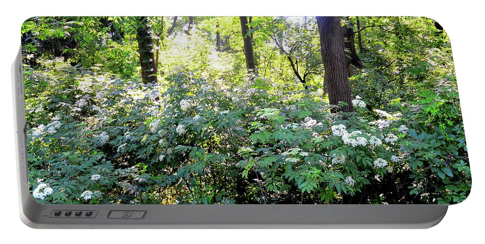 Lush Greenery Portable Battery Charger featuring the photograph Lush Greens by Sharmila Taylor