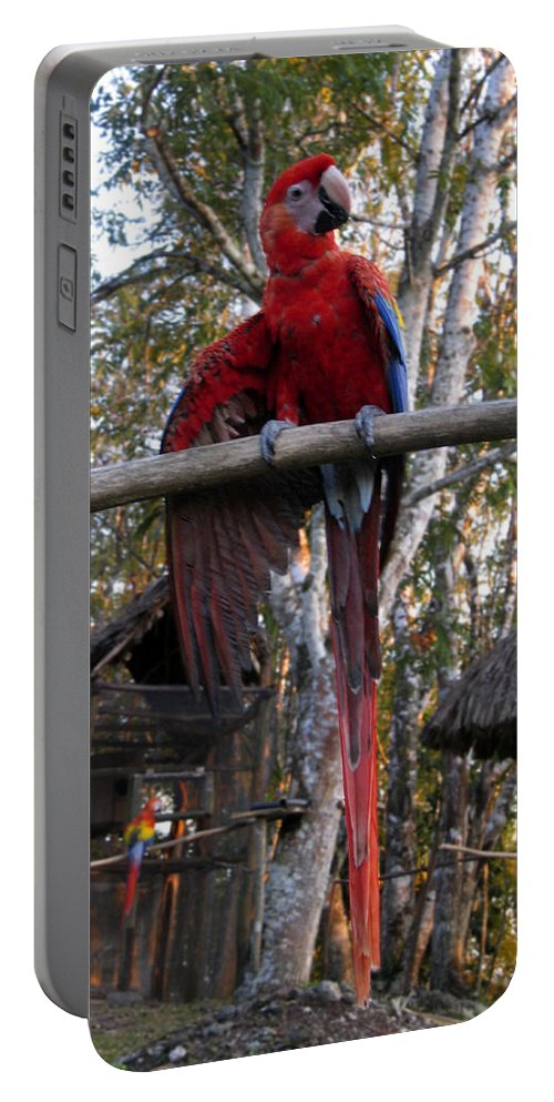 Macaw Portable Battery Charger featuring the photograph Macaw Guatemala by Kurt Van Wagner