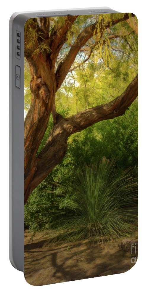 Jon Burch Portable Battery Charger featuring the photograph Made In The Shade by Jon Burch Photography