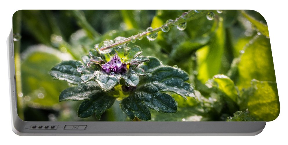 Blade Portable Battery Charger featuring the photograph Magic Wand by Susan Eileen Evans