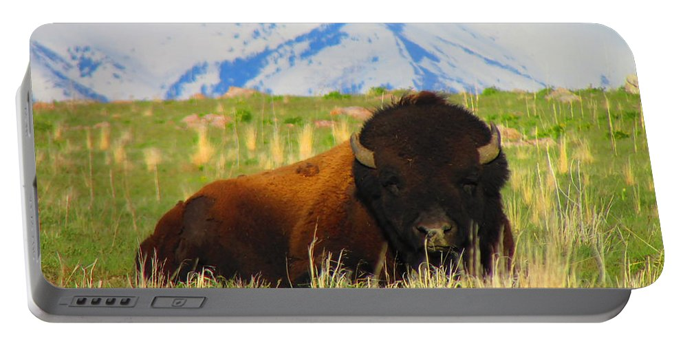 Buffalo Portable Battery Charger featuring the photograph Majestic Buffalo by Carol Dyer