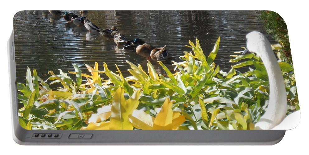 Trumpeter Swan Portable Battery Charger featuring the photograph All My Ducks In A Row by LKB Art and Photography