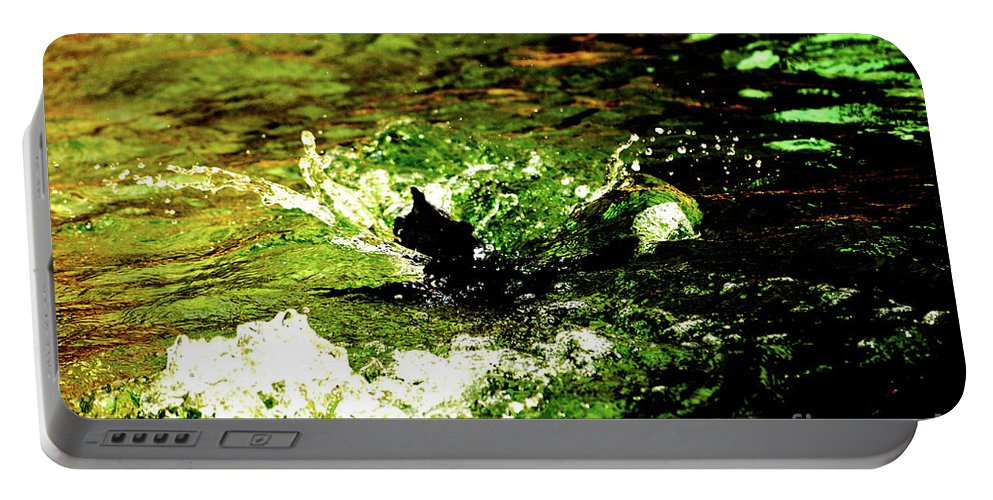 Water Portable Battery Charger featuring the photograph Making A Splash by Lori Tambakis