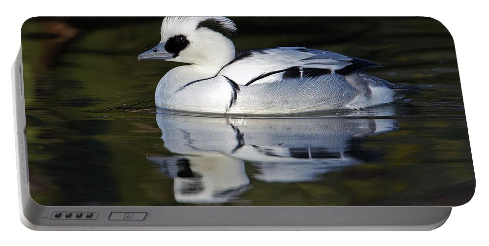 Birds Portable Battery Charger featuring the photograph Male Smew by Bob Kemp