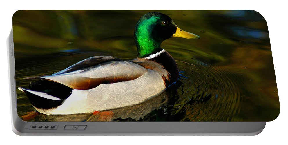 Clay Portable Battery Charger featuring the photograph Mallard Green by Clayton Bruster