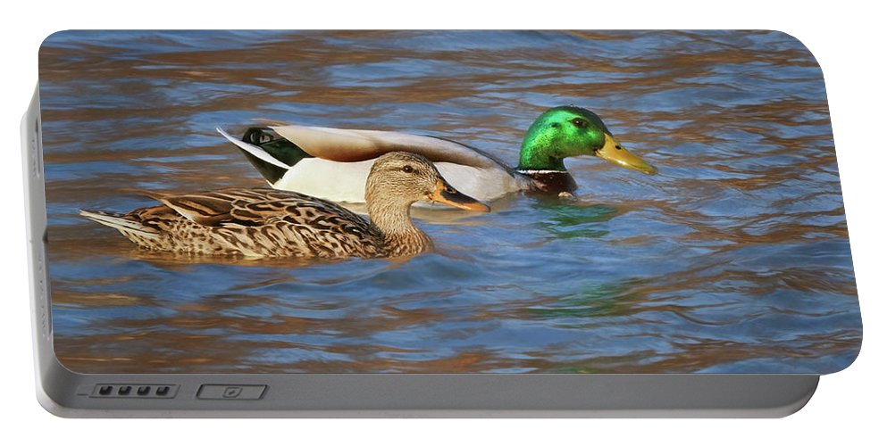 Wild Duck Portable Battery Charger featuring the photograph Mallard Pair by Nikolyn McDonald