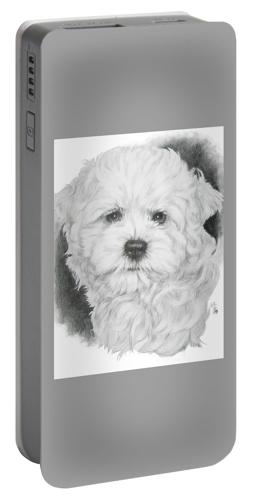 Designer Dog Portable Battery Charger featuring the drawing Malti-chon by Barbara Keith