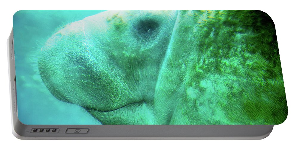 Animal Portable Battery Charger featuring the photograph Manatee by Rich Leighton