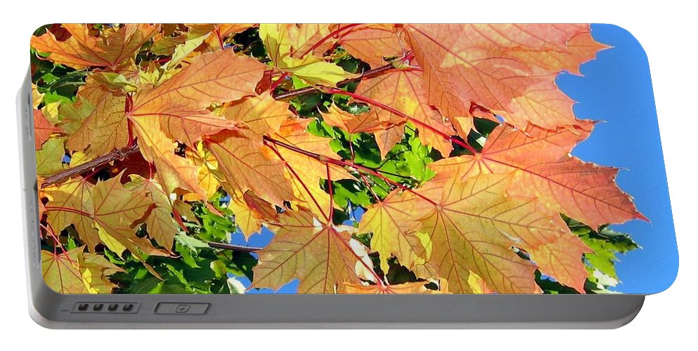 Autumn Portable Battery Charger featuring the photograph Maple Mania 1 by Will Borden