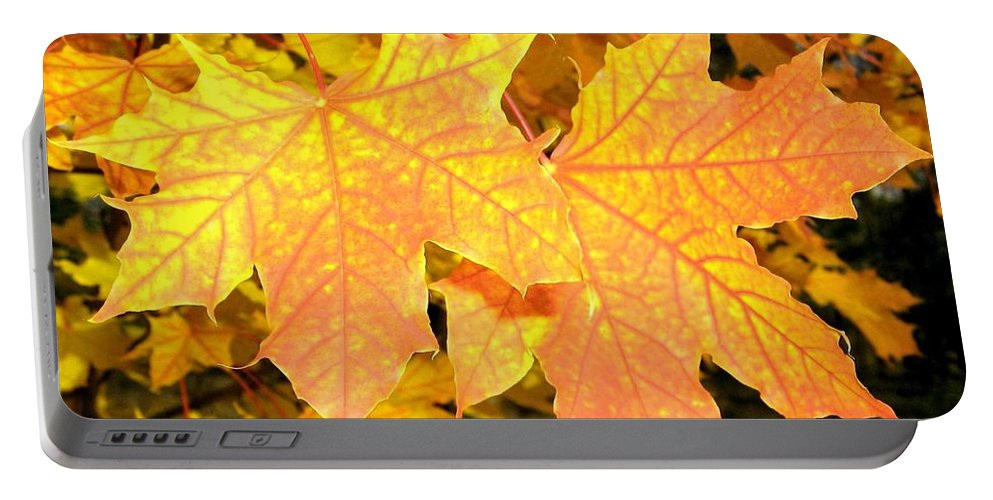 Autumn Portable Battery Charger featuring the photograph Maple Mania 2 by Will Borden