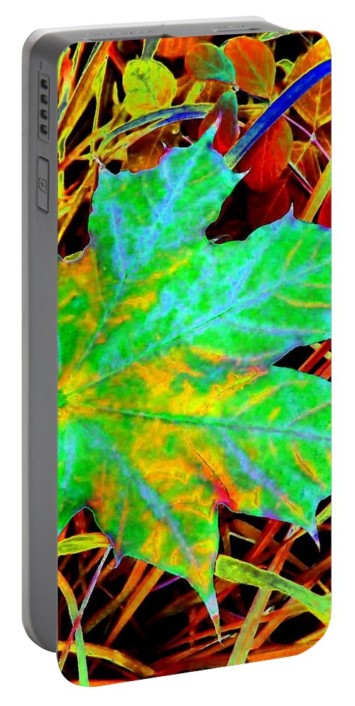 Maple Leaf Portable Battery Charger featuring the photograph Maple Mania 21 by Will Borden