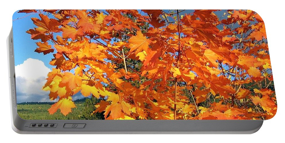 Autumn Portable Battery Charger featuring the photograph Maple Mania 8 by Will Borden