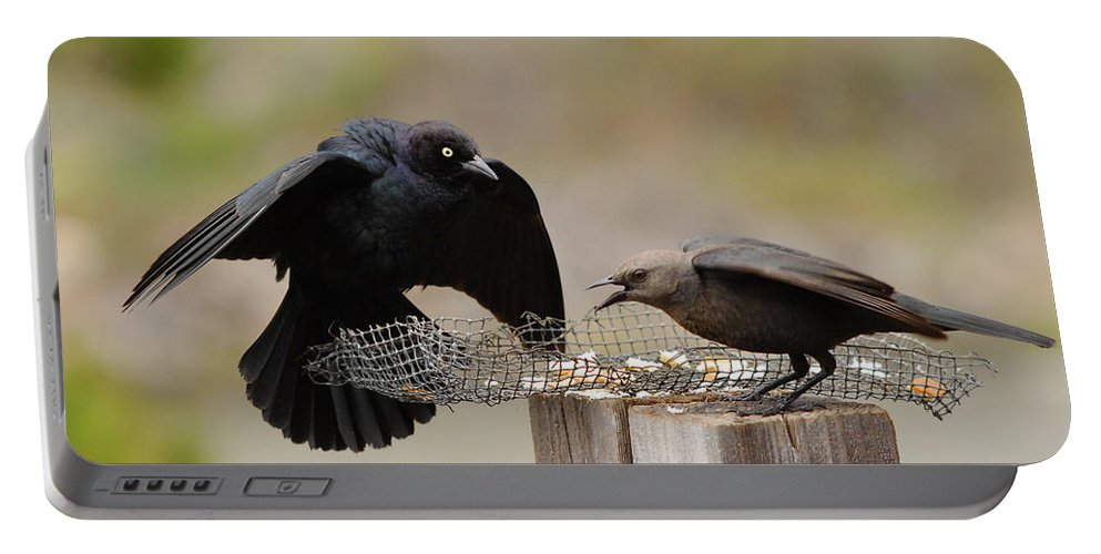 Black Birds Portable Battery Charger featuring the photograph Marital Bliss by Donna Blackhall