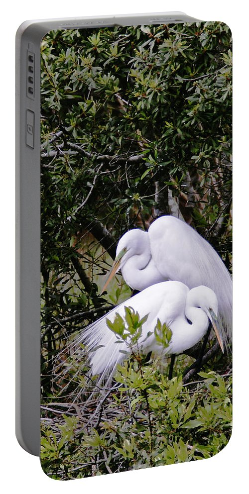 Bird Portable Battery Charger featuring the photograph Mating Season by Phill Doherty