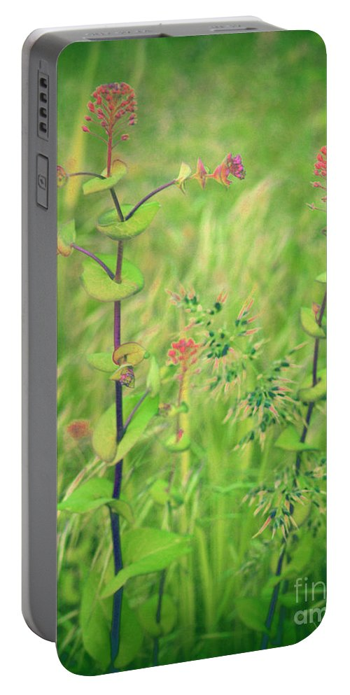 Grass Portable Battery Charger featuring the photograph May 13 2010 by Tara Turner