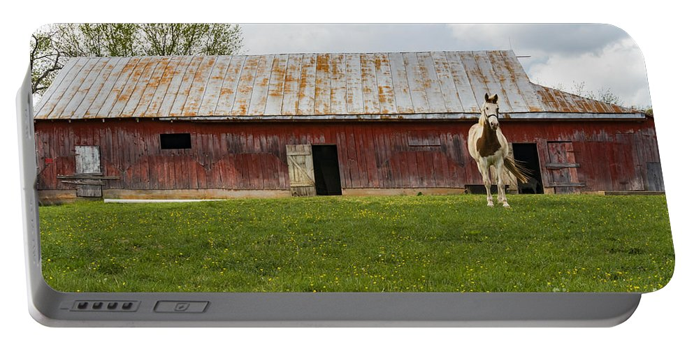 New Castle Virginia Barn Barns Structure Structures Building Buildings Texture Architecture Door Doors Horse Horses Animal Animals Creature Creatures Portable Battery Charger featuring the photograph Me And My House by Bob Phillips