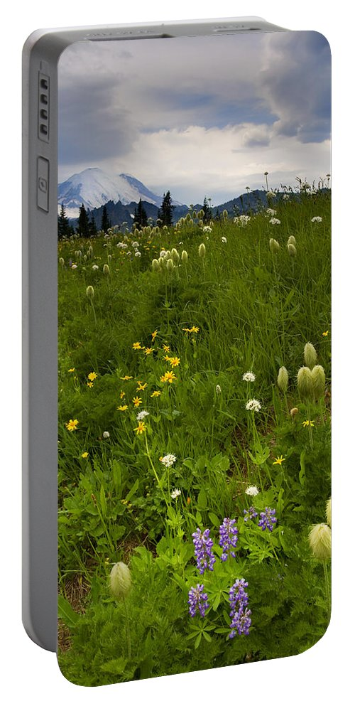 Rainier Portable Battery Charger featuring the photograph Meadow Beneath The Storm by Mike Dawson
