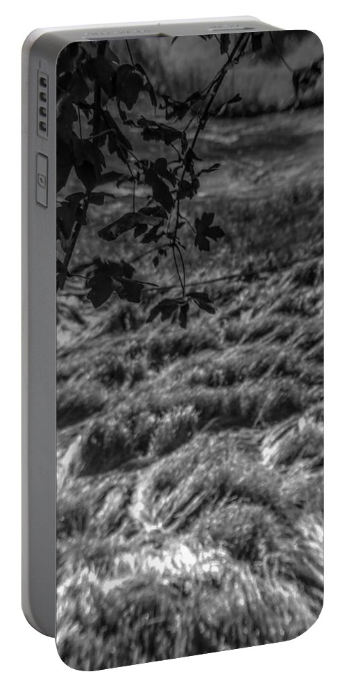 Montaigle Portable Battery Charger featuring the photograph Meadow Of Montaigle by Stephen Settles