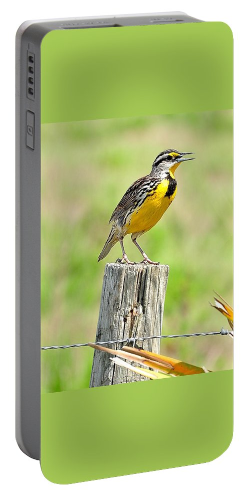 Meadowlark Portable Battery Charger featuring the photograph Meadowlark 5 by Amy Spear