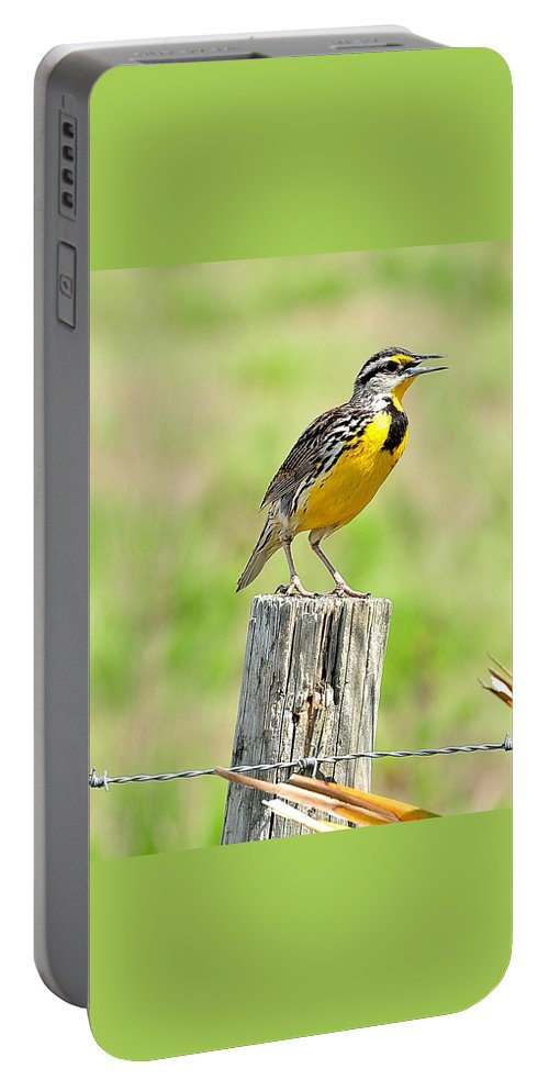 Meadowlark Portable Battery Charger featuring the photograph Meadowlark 7 by Amy Spear